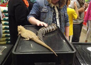 Reptile Encounter