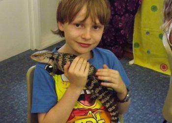 Reptile Meeting